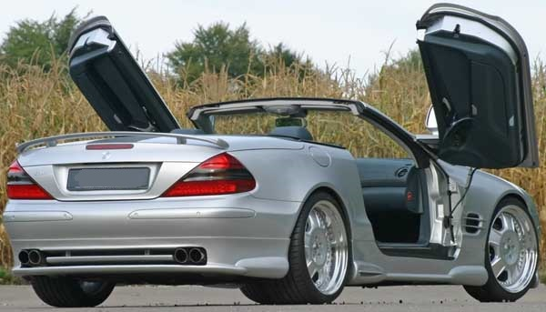 We call them Gull Wing Doors but many customers refer to them as Butterfly doors or Delorean ... & Butterfly Doors? Gull Wing Doors? Gullwing Doors? You know like the ...